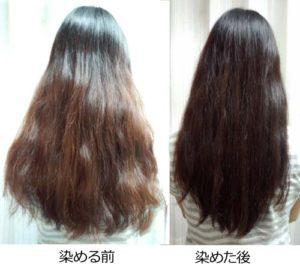 黒髪戻しの使用例(染める前、染めた後)画像